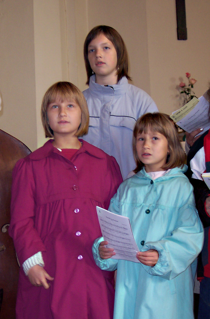 08_komin_2006
