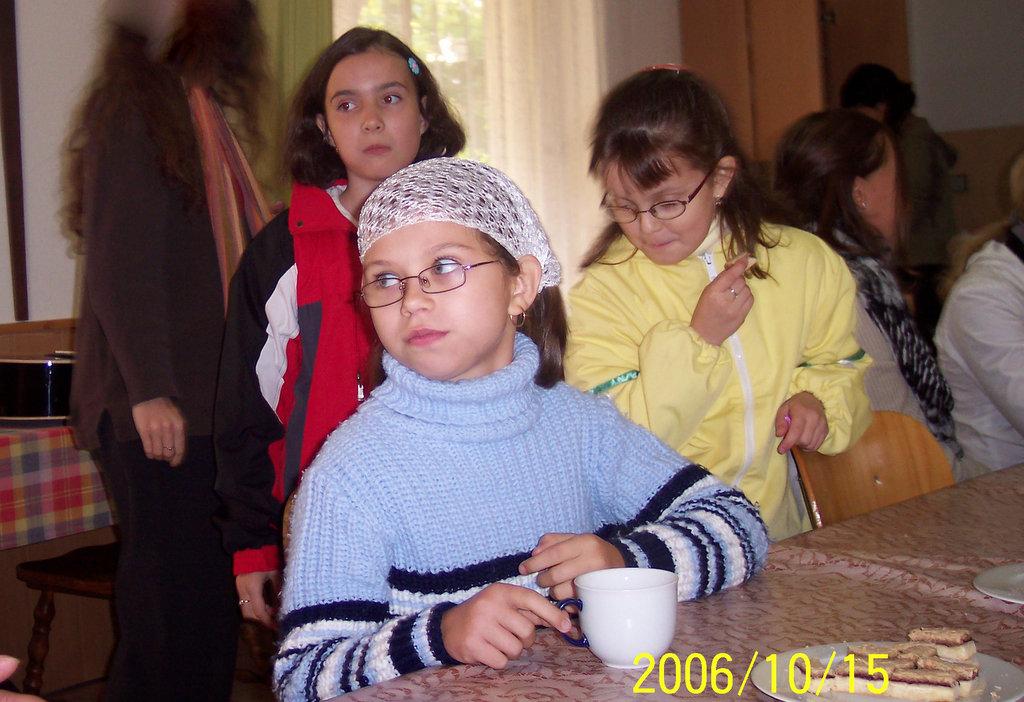 18_komin_2006